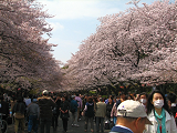 2011-04-10-1132-s.png