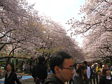 2011-04-10-1138-s.png